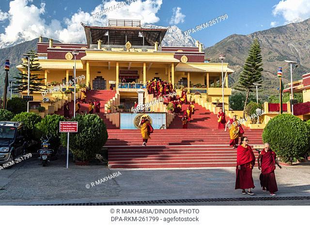 Gyuto Monastery, Dharamsala, Himachal Pradesh, India, Asia