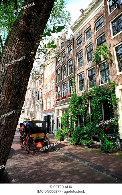 Netherlands, North Holland, Amsterdam, carriage