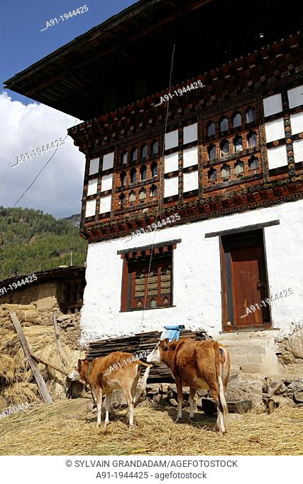 Bhutan (kingdom of), District of Paro, the road to Taktschang, traditional house