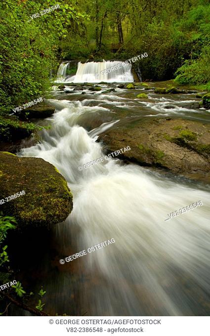Falls on McDowell Creek, McDowell Creek Falls County Park, Oregon