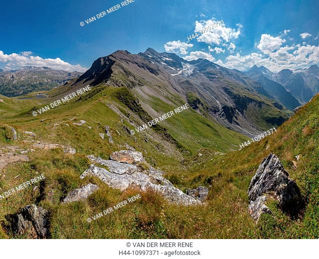 Ferleiten, Austria, Grossglockner High Alpine Road, alpine meadow