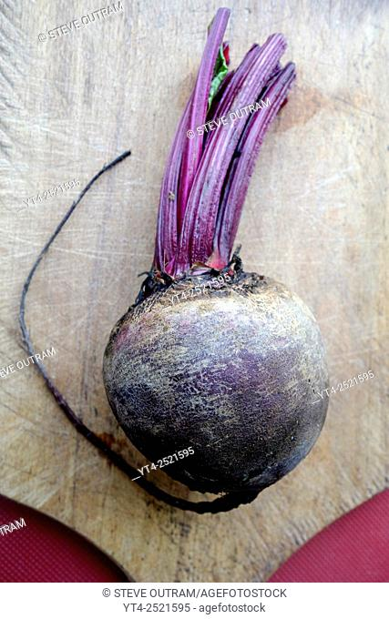 Fresh Uncooked Beetroot