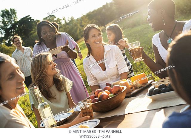 A family and friends having a meal outdoors. A picnic or buffet in the early evening