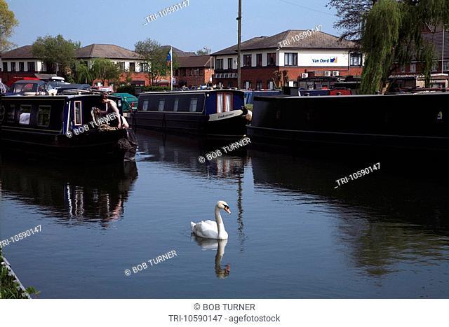 Narrow Boats & Swan Kennet & Avon Canal Newbury Berkshire England
