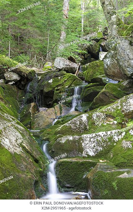 Fleming Flume on Elephant Head Brook in Carroll, New Hampshire during the summer months