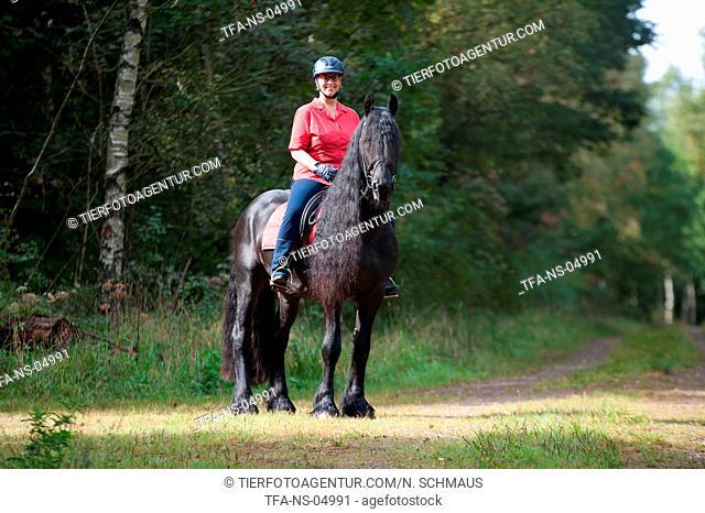 woman rides Friesian Horse