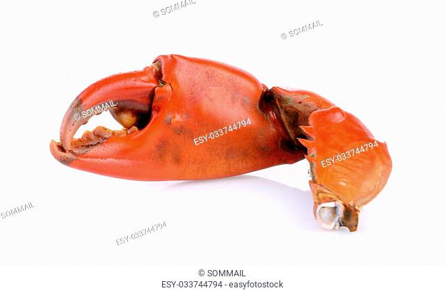 Boiled crab claws isolated on white background