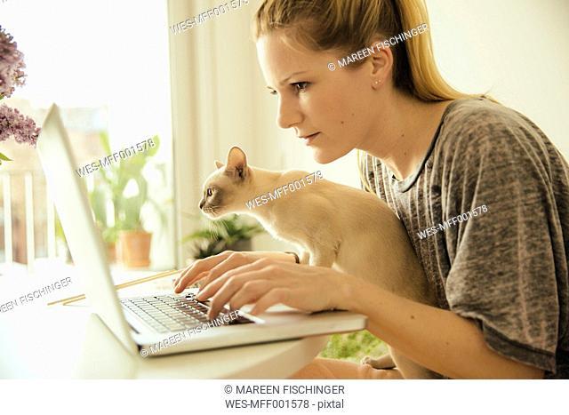 Woman with Burmese cat using laptop