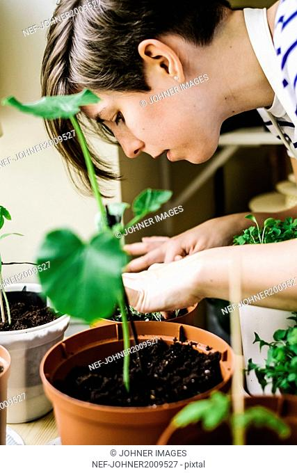 Young woman tying plant