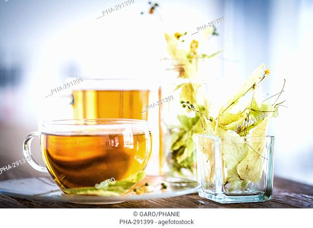 Linden herbal tea
