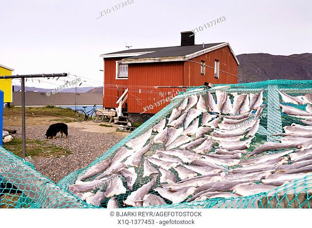 A house in Narsaq, fish left out to dry  South Greenland