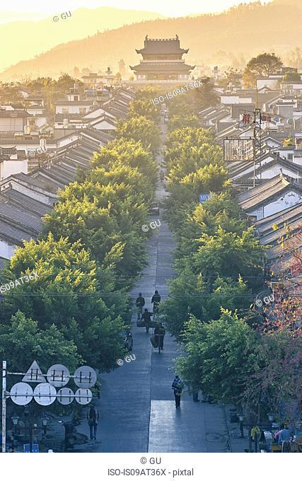 High angle diminishing perspective of tree lined street and pagoda, Dali, Yunnan, China