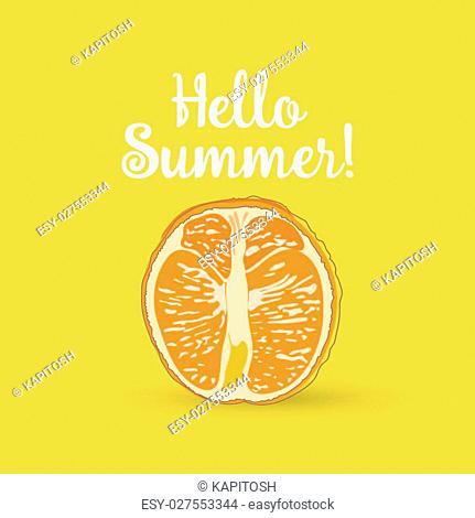 Hello Summer Inscription over orange. Vector orange isolated on yellow background