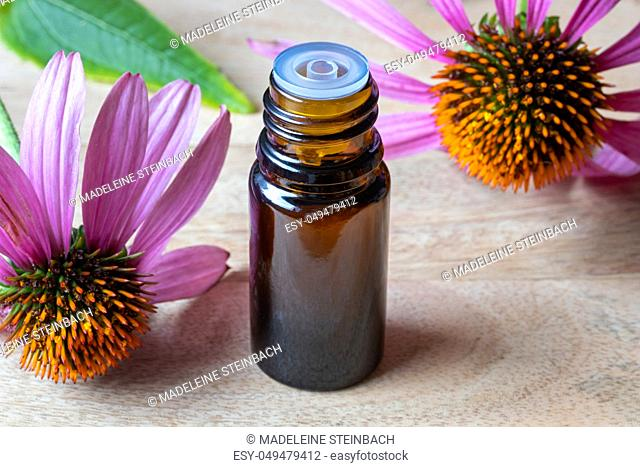 A bottle of essential oil with fresh echinacea flowers