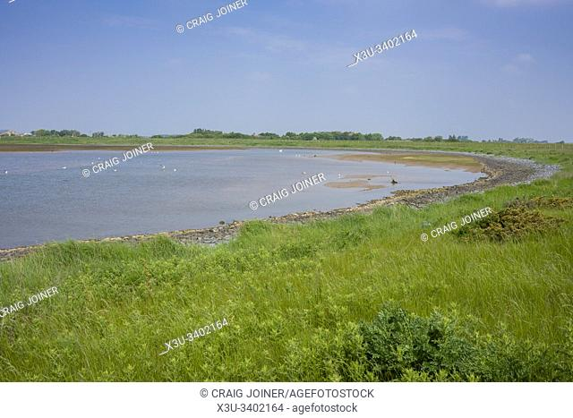 Medmerry Nature Reserve near Sidlesham on the West Sussex coast, England
