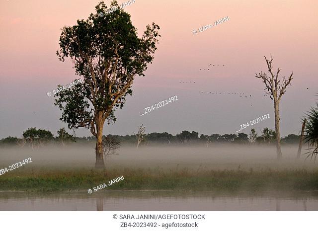 Kakadu National Park, Northern Territory, Australia, Oceania