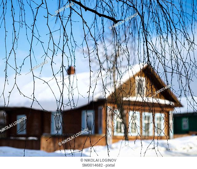 Russian house through tree branches backdrop