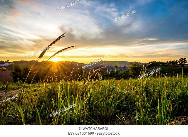 Sunrise in the morning, surrounded by mountains and meadows