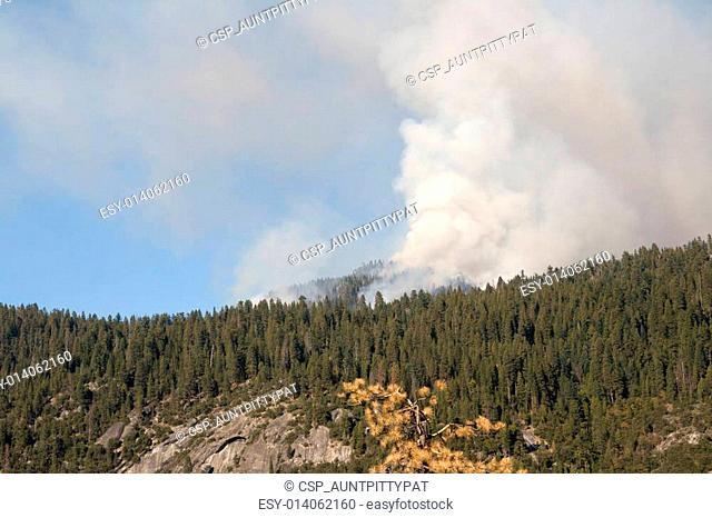 Wildfire in Yosemite
