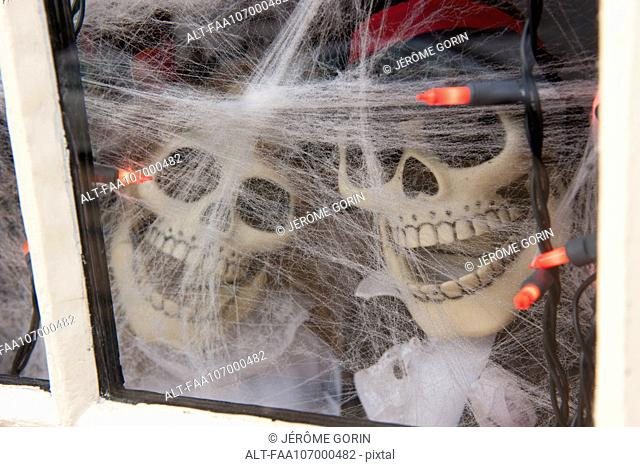 Decorative Halloween skeletons looking through window
