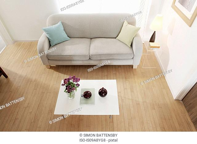 Simple and minimal furnishing in living room