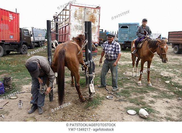 Kyrgyz farrier hammers nails into the horse's hoof at animal market in Karakol, Kyrgyzstan