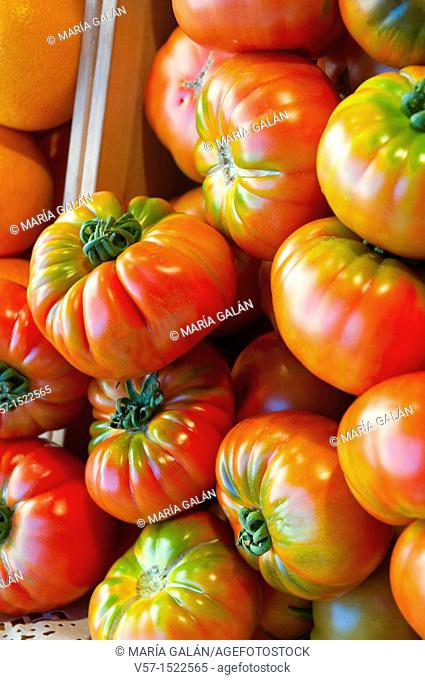 Red tomatoes. Close view