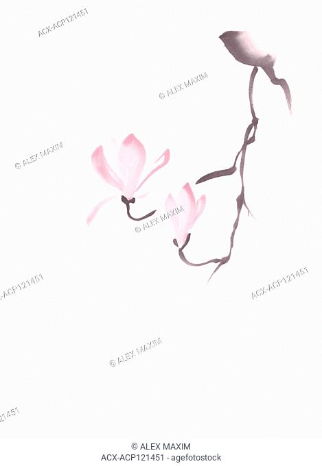 Beautiful elegant magnolia branch with two pink blooming flowers, artistic oriental Zen style sumi-e illustration on light pink background