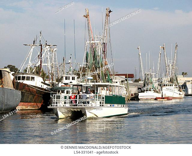 Fishing and sponge boats at dock, Tarpon Springs. Florida, USA