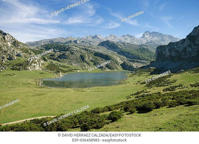 Picos de Europa mountains, Asturias, Spain