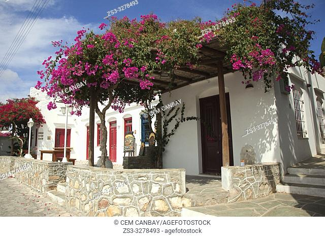 Whitewashed traditional Cyclades houses with colorful doors and windows covered with bougainvilleas in Artemonas village, Sifnos Island, Cyclades Islands