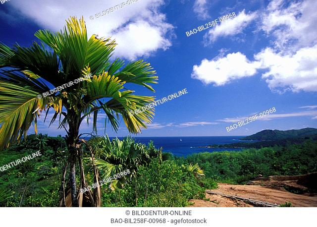 The scenery on the island Mahe on the Seychelles in the Indian ocean