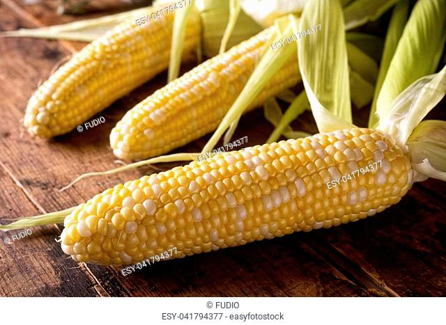 Freshly picked corn on the cob on a rustic wooden harvest table