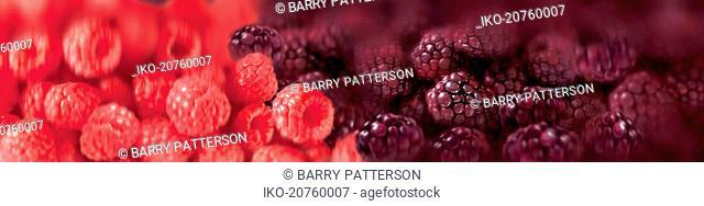 Close up of raspberries and boysenberries