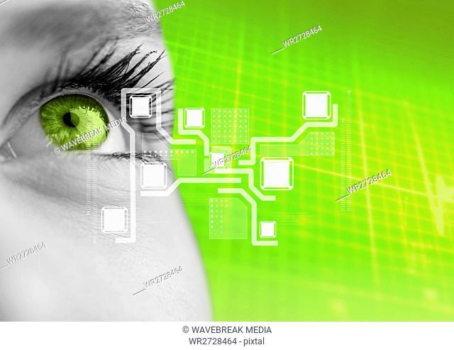Eye of woman looking at digital interface