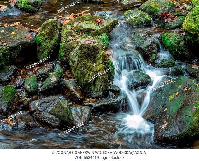 Ein Bach mit Steinen und fliessendem Wasser. Landschaft erleben in der Natur