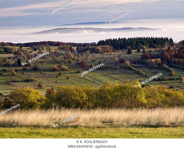 Germany, Bavaria, Rhön Biosphere Reserve, UNESCO biosphere reserve, Long Rhön Nature Reserve, autumn on the high Rhön, looking into Ellenbogen in the Thuringian...