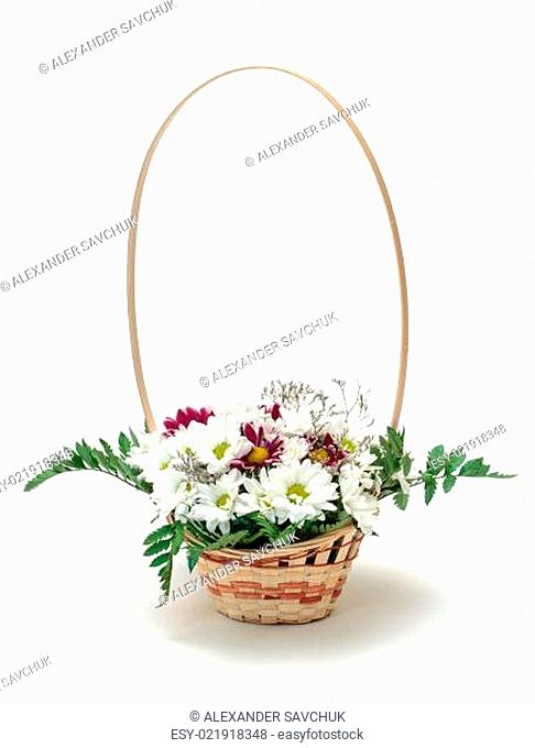 Vibrant Flowers Daisies in Basket