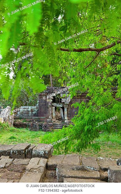 Elephant Terrace  Angkor Thom  Angkor  Siem Reap town, Siem Reap province, Cambodia, Asia