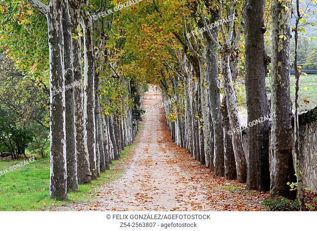 Paseo Jardin del Principe, San Lorenzo del Escorial, Madrid, España