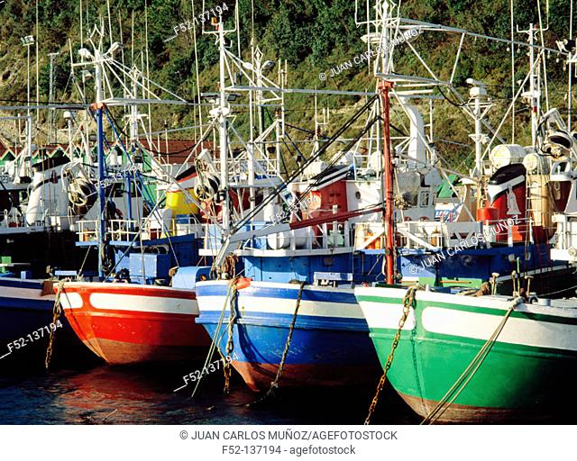 Fish harbour. Hondarribia. Guipuzcoa. Basque Country. Spain