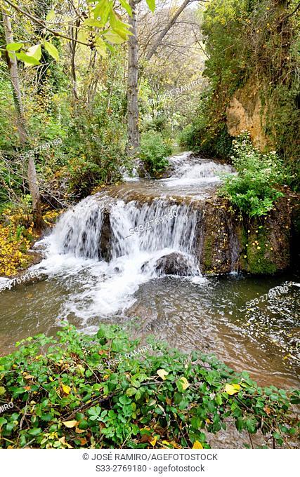 River Dulce in Aragosa. Guadalajara. Castilla la Mancha. Spain. Europe