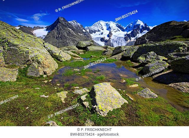 view from Fuorcla Surlej onto Piz Tschierva-3546 m, Piz Bernina-4049 m, Biancograt, Piz Roseg-3937 m, Switzerland, Grisons, Engadine