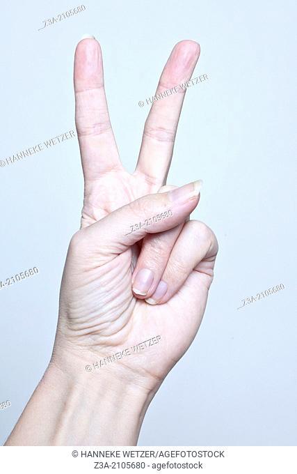 Peace, Hand Gesture, studio shot