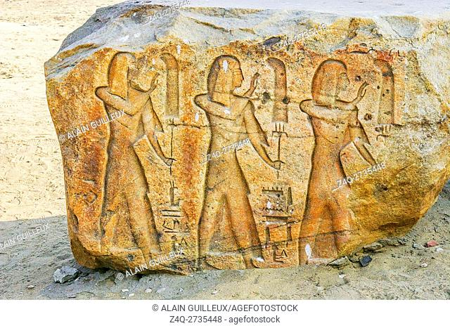 Egypt, Nile Delta, Tanis, exhibition of several ancient artifacts : Procession of fanbearers