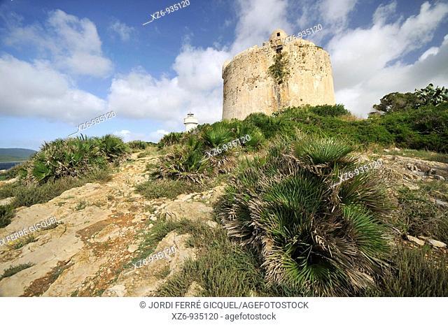 Torre Nuova in the Porto Conte bay  Alghero, island of Sardinia, Sassari province, Italy, Europe