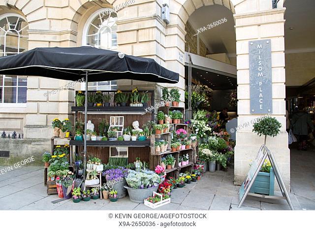 Milsom Place Florist; Bath; England; UK