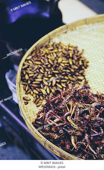 The Damnoen Saduak Floating Market, a tray of fried grasshoppers and larva for sale at floating market