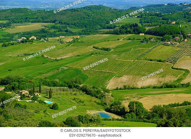Scenery near to Montepulciano, Tuscany. The area is part of the Val d'Orcia Italy Europe