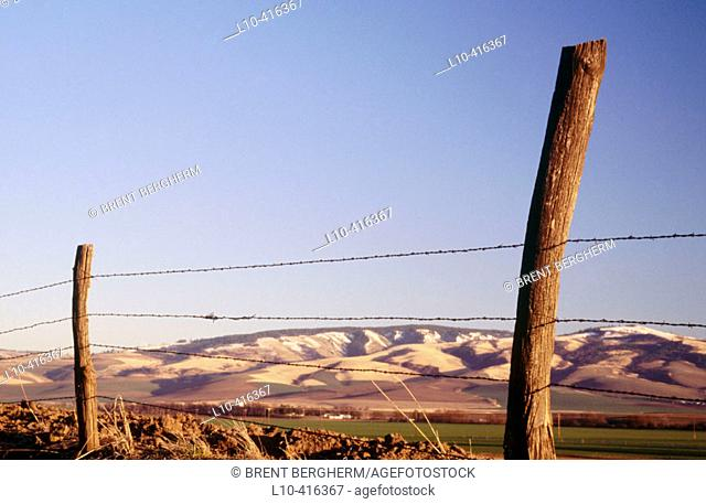 Barbed wire fence and post frames. A nice scene of the snowcapped blue mountains in SE Washington. Walla Walla County. USA